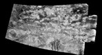 """The """"Xanadu Annex"""" on Titan: This synthetic-aperture radar (SAR) image was obtained by NASA's Cassini spacecraft on July 25, 2016, during its """"T-121"""" pass over Titan's southern latitudes."""