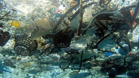 This file 2008 photo provided by NOAA Pacific Islands Fisheries Science Center shows debris in Hanauma Bay, Hawaii.