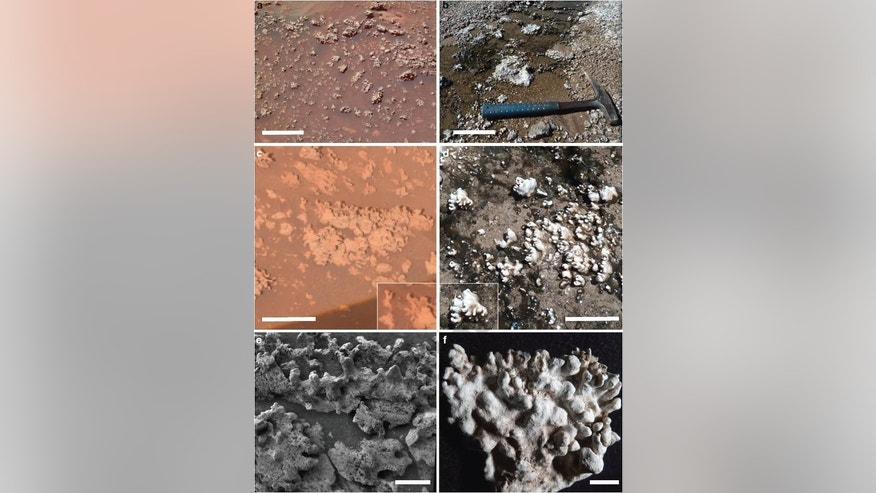 mars rover fox news - photo #39