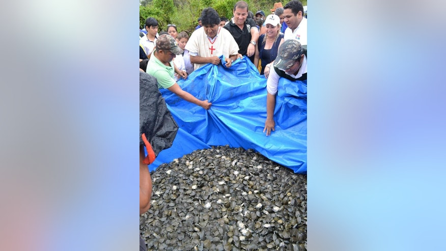 Bolivian President Evo Morales (center) presides the release of more than 70,000 baby turtles.