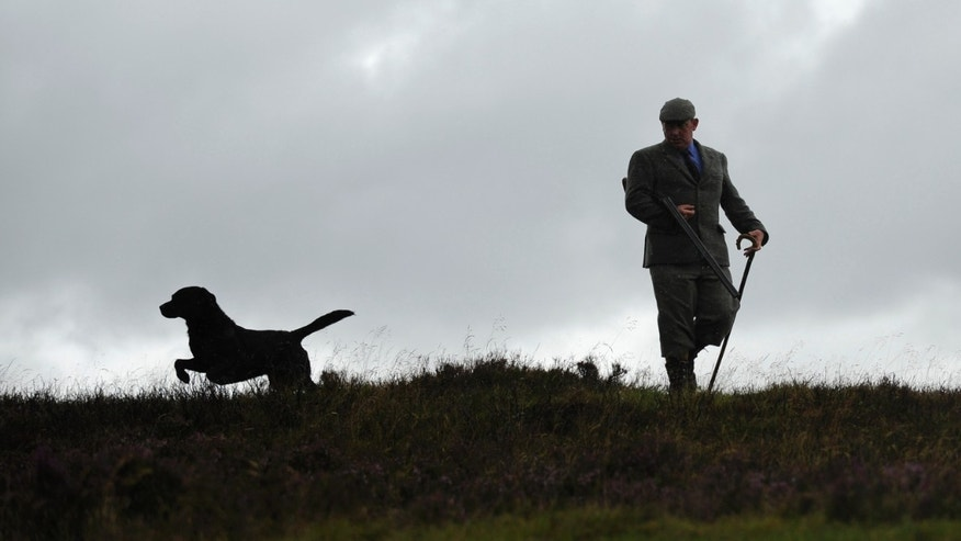 File photo: Gamekeeper Bob Pirie poses with his dog Kyle on a heather moor a day before the opening of the grouse shooting season, on the Auchleeks Estate near Trinafour, Scotland August 11, 2010.