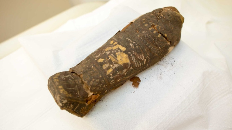 The tiny mummy at Maidstone Museum (Maidstone Museum)