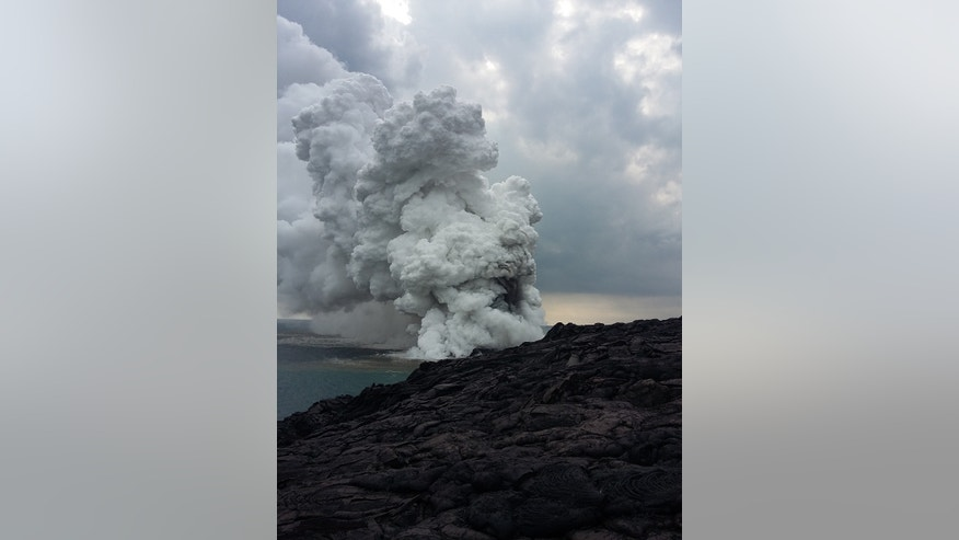 A large plume of gas, ash and steam resulted from the lava delta collapse in Hawaii Volcanoes National Park on New Year's Eve.