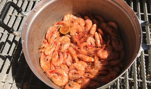 Freshly caught Gulf of Mexico white shrimp steamed for lunch at the Ditcharo Seafood Dock  in Buras, Louisiana on Aug. 20, 2015.  Gulf shrimpers, many from Vietnam and Cambodia, fear that a looming Pacific trade deal will do little to stem the flow of imported shrimp from Asia that is pressuring dock prices to their lowest levels since 2009.  Photo taken August 20, 2015.  REUTERS/David Lawder - RTS17J2