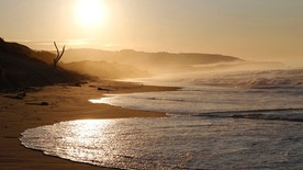 The sun rises over St. Clair beach in Dunedin September 5, 2011. REUTERS/Brandon Malone (NEW ZEALAND - Tags: ENVIRONMENT) - RTR2QTCB