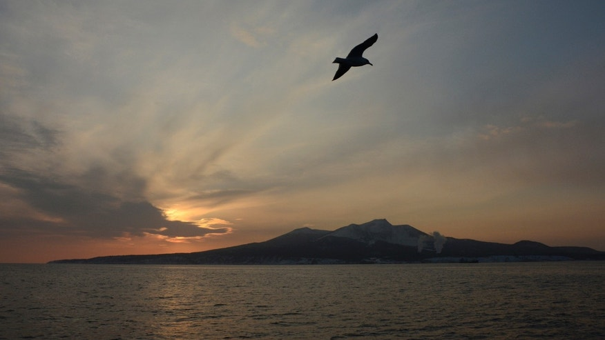 File photo - A seagull flies above the waters of the Pacific Ocean near the Island of Kunashir, one of four islands known as the Southern Kuriles in Russia and the Northern Territories in Japan, Dec. 20, 2016. (REUTERS/Yuri Maltsev)