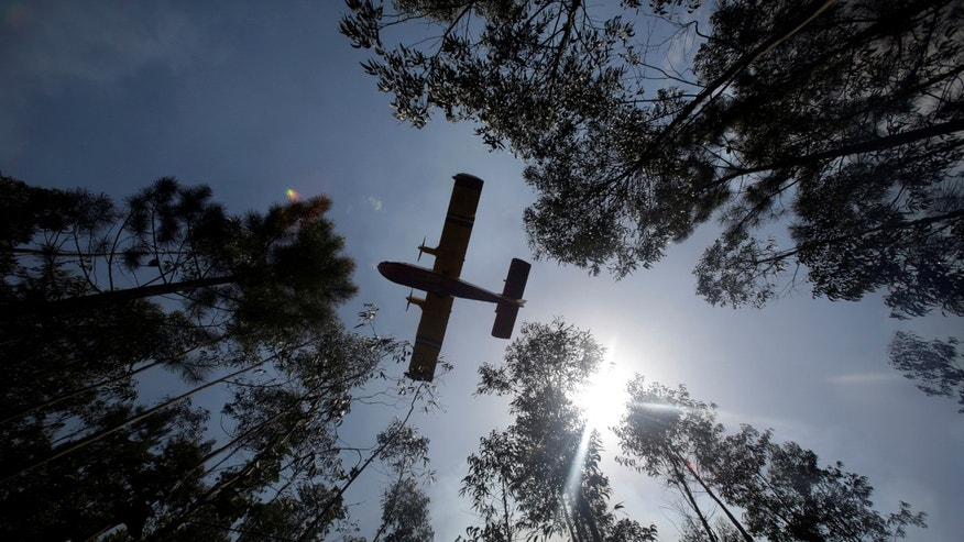 File photo: A firefighting plane flies past before dumping water on a forest fire in Louriceira, Portugal, June 20, 2017. (REUTERS/Miguel Vidal)