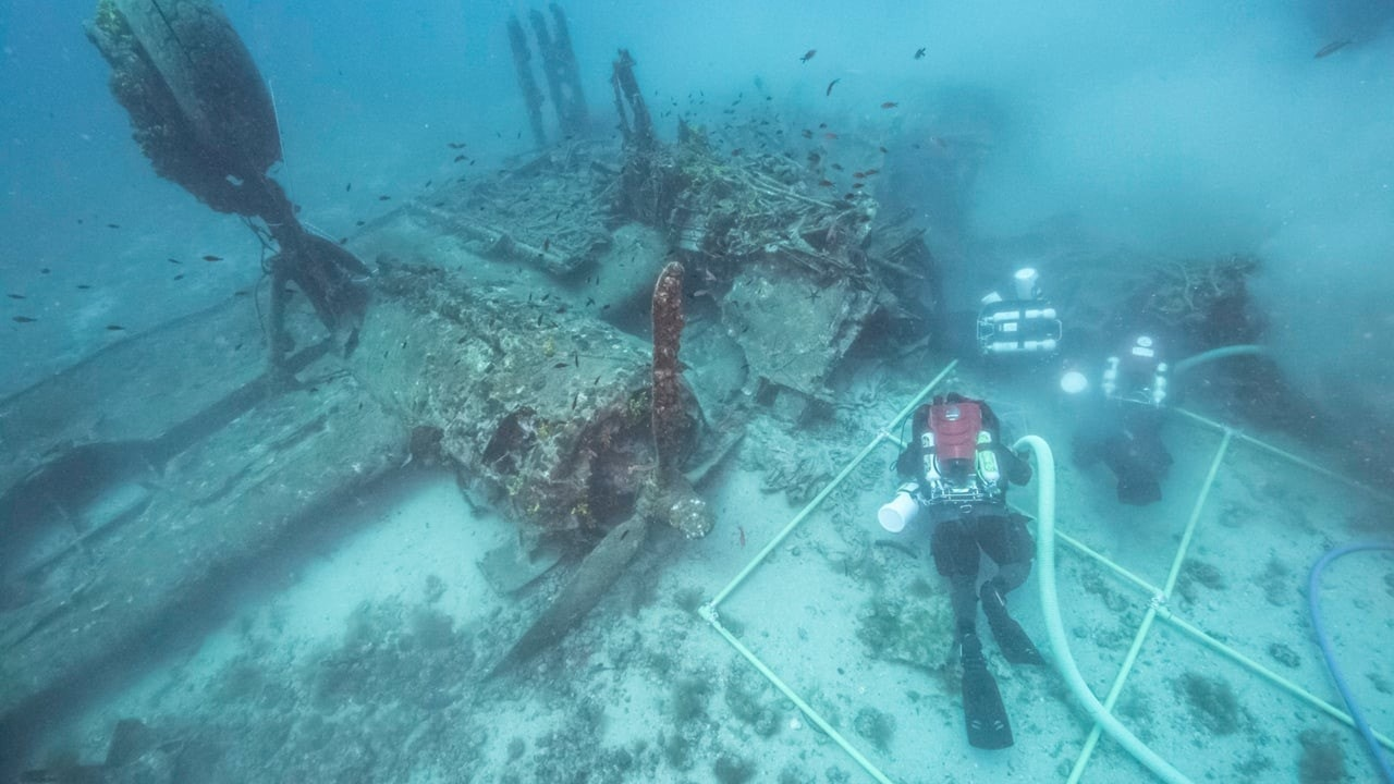 Sunken remains of WWII soldiers may come home