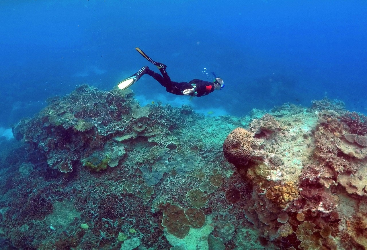 Shocking 'blue hole' discovered in the Great Barrier Reef