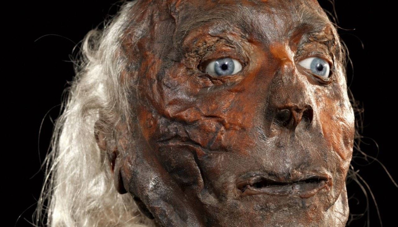 Eccentric Jeremy Bentham's severed head to be displayed as scientists look for clues of autism