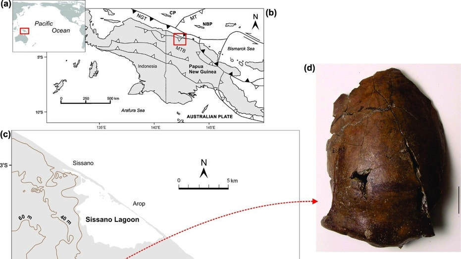 Ancient skull could belong to first known tsunami victim ...