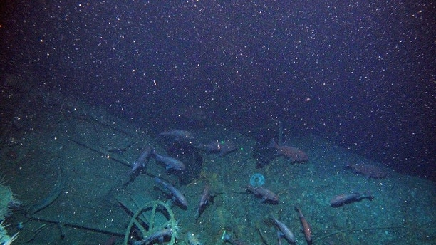 Century-old Navy submarine mystery solved