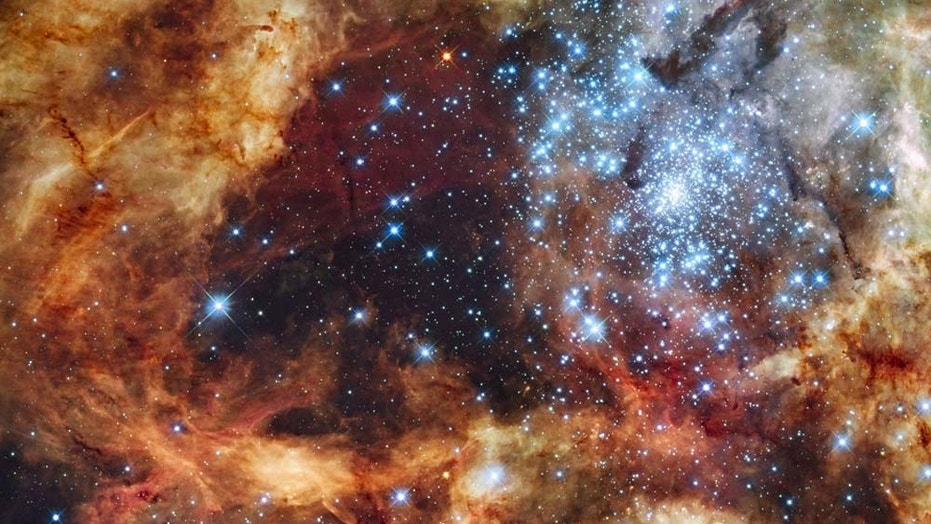 The Tarantula Nebula, located about 180,000 light-years from Earth in the neighboring galaxy known as the Large Magellanic Cloud, hosts stars with the greatest masses yet detected. New research examining this nebula suggests massive stars are even more common than previously thought.