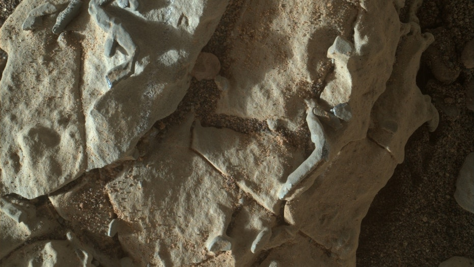 NASA's Mars rover Curiosity captured this image on Jan. 2, 2018, using its Mars Hand Lens Imager. The tubular structures were likely created by crystalline growth, mission team members said.