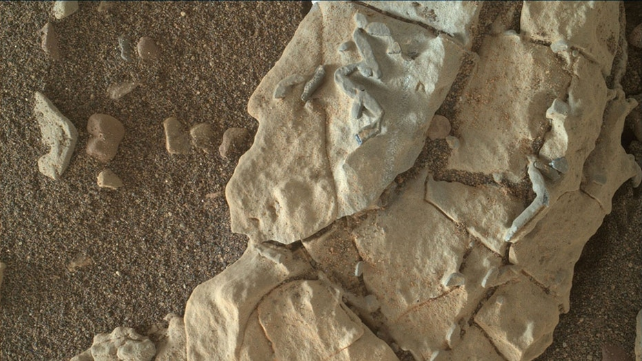 Dark, stick-shaped features that are about the size of a grain of rice, can be seen clustered on this Martian rock. This is a focus-merged view from the Mars Hand Lens Imager (MAHLI) camera on NASA's Curiosity Mars rover. It covers an area about 2 inches (5 centimeters) across.