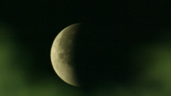 Seen through the green of trees a Lunar eclipse occurs in the sky over New Delhi May 5, 2004. A lunar eclipse happens when the Sun, Earth and Moon are in alignment, with the Earth casting a shadow onto the moon. - PBEAHUOJCBV