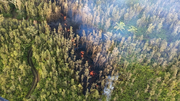 In this photo released by U.S. Geological Survey, lava is shown burning in Leilani Estates subdivision near the town of Pahoa on Hawaii's Big Island Thursday, May 3, 2018 in Hawaii Volcanoes National Park. Kilauea volcano erupted Thursday, sending lava shooting into the air in the residential neighborhood and prompting mandatory evacuation orders for nearby residents. (U.S. Geological Survey via AP)