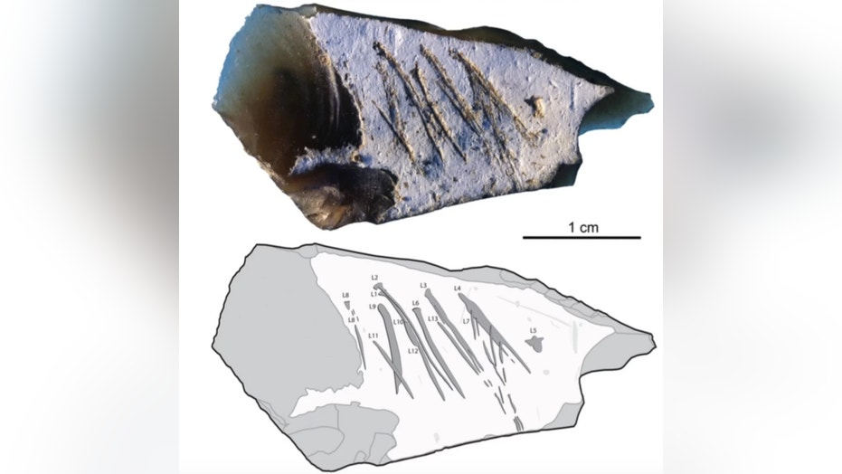 The engraved flint flake from Kiik-Koba, Crimea. The flint has 13 etch marks, which were likely made by one or multiple pointed stones. Credit: Ana Mahjkic et al./PLoS ONE/CC by 4.0