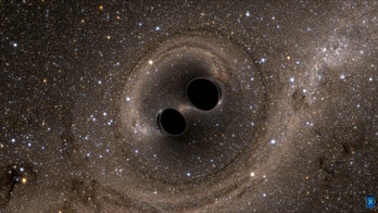 The collision of two black holes  - a tremendously powerful event detected for the first time ever by the Laser Interferometer Gravitational-Wave Observatory, or LIGO - is seen in this still image from a computer simulation released in Washington February 11, 2016. Scientists have for the first time detected gravitational waves, ripples in space and time hypothesized by Albert Einstein a century ago, in a landmark discovery announced on Thursday that opens a new window for studying the cosmos.    REUTERS/The SXS (Simulating eXtreme Spacetimes)/Handout via Reuters    FOR EDITORIAL USE ONLY. NOT FOR SALE FOR MARKETING OR ADVERTISING CAMPAIGNS. THIS IMAGE HAS BEEN SUPPLIED BY A THIRD PARTY. IT IS DISTRIBUTED, EXACTLY AS RECEIVED BY REUTERS, AS A SERVICE TO CLIENTS      TPX IMAGES OF THE DAY - RTX26JHT