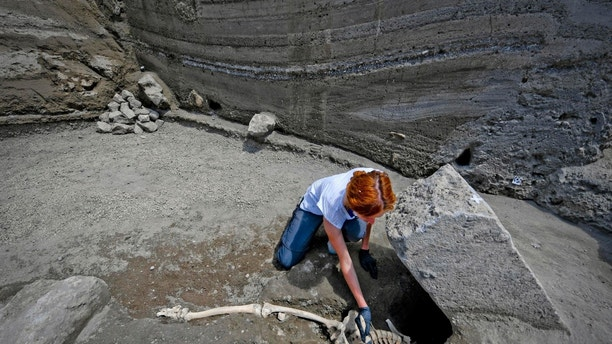 Anthropologist Valeria Amoretti works with a brush on a skeleton of a victim of the eruption of Mt. Vesuvius in A.D. 79, which destroyed the ancient town of Pompeii, at Pompeii' archeological site, near Naples, on Tuesday, May 29, 2018. The skeleton was found during recent excavations and is believed to be of a 35-year-old man with a limp who was hit by a pyroclastic cloud during the eruption. (Ciro Fusco/ANSA via AP)