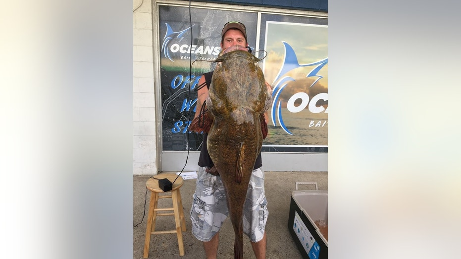 Virginia resident Jeffrey Dill reeled in a record-breaking flathead catfish out of Lake Smith in Virginia Beach.