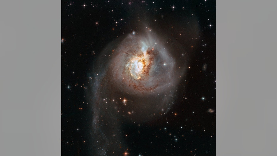 This Hubble Space Telescope image shows the peculiar galaxy NGC 3256. The galaxy is about 100 million light-years from Earth and is the result of a past galactic merger, which created its distorted appearance. As such, NGC 3256 provides an ideal target to investigatestarburststhat have been triggered by galaxy mergers.