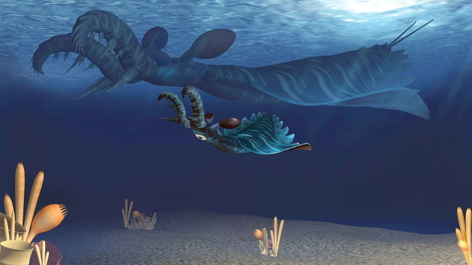 500 million-year-old claw-faced sea monster was a killing ...