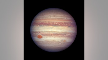 FILE - This April 3, 2017 file image made available by NASA shows the planet Jupiter when it was at a distance of about 668 million kilometers (415 million miles) from Earth. On Monday, May 21, 2018, scientists reported that an asteroid sharing Jupiter's orbit, but in reverse, actually hails from a neighboring star system. They say the asteroid, known as 2015 BZ509, has been in this peculiar backward orbit ever since getting sucked into our solar system in the first moments after our solar system formed 4.5 billion years ago. (NASA, ESA, and A. Simon (GSFC) via AP, File)