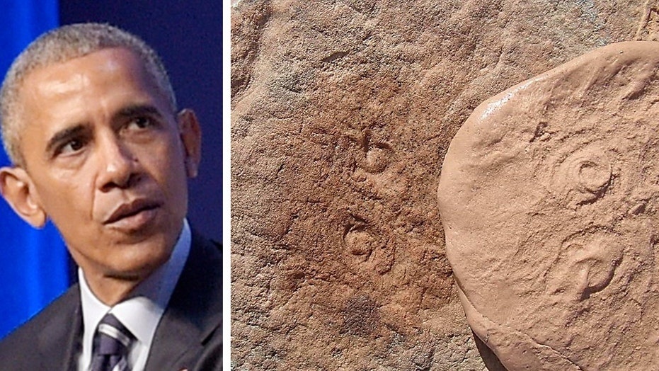 An ocean creature found in Australia by researchers has been named after former President Barack Obama.