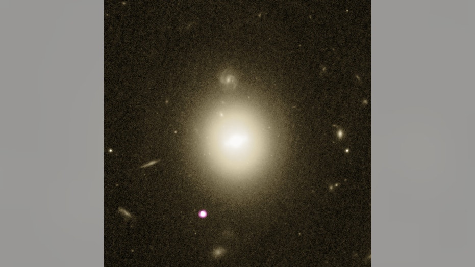 The black hole candidate and its host galaxy
