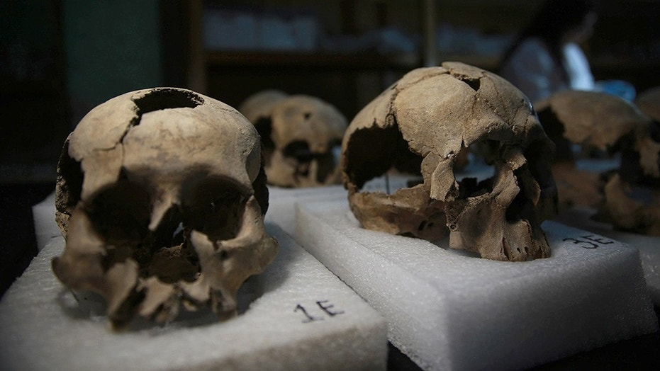 MEXICO CITY, MEXICO -  JULY 10: Skulls, which were found during an excavation work, are seen in National Institute of Anthropology and History's laboratory in Mexico City, Mexico on July 10, 2017. More than 650 skulls and thousands of fragments were found near Templo Mayor, one of the main temples in the Aztec capital Tenochtitlan, which later became Mexico City. The discovery has raised new questions about the culture of sacrifice in the Aztec Empire.