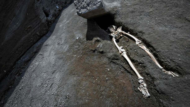 The legs of a skeleton emerge from the ground beneath a large rock believed to have crushed the victim's bust during the eruption of Mt. Vesuvius in A.D. 79, which destroyed the ancient town of Pompeii, at Pompeii's archeological site, near Naples, on Tuesday, May 29, 2018. The skeleton was found during recent excavations and is believed to be of a 35-year-old man with a limp who was hit by a pyroclastic cloud during the eruption. (Ciro Fusco/ANSA via AP)