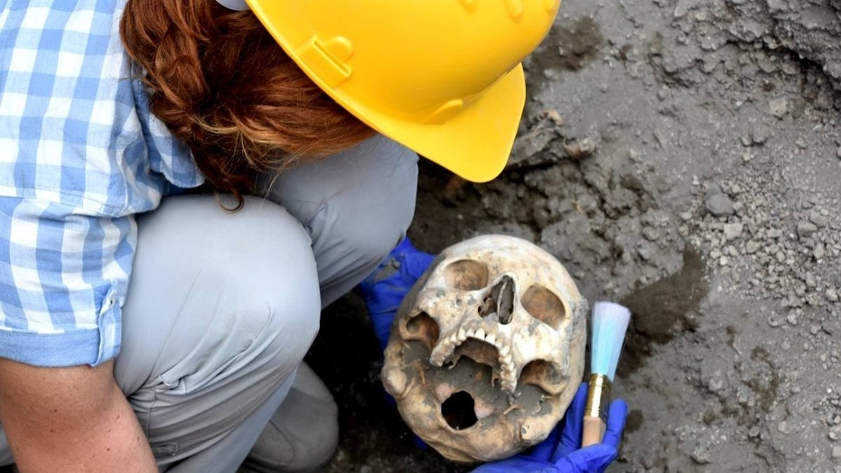 The skull discovered in Pompeii (Pompeii - Parco Archeologico)