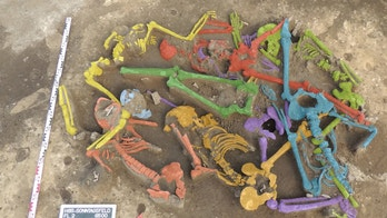 7000 year old massacre