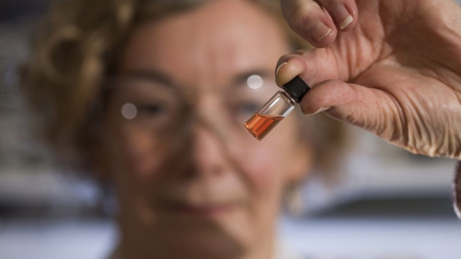 Biogeochemistry Lab Manager Janet Hope from the ANU Research School of Earth Sciences holds a vial of pink colored porphyrins representing the oldest intact pigments in the world. (Credit: ANU)