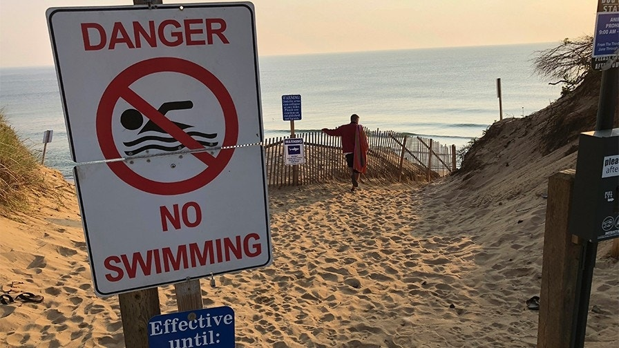 Days after shark attack, town on Cape Cod closes beach to swimmers 'due to continued shark activity'