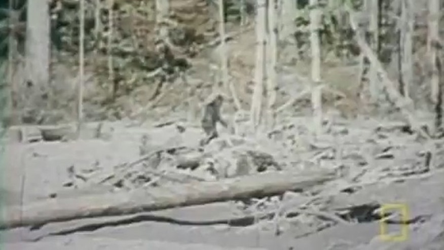 11 most mystifying Bigfoot sightings