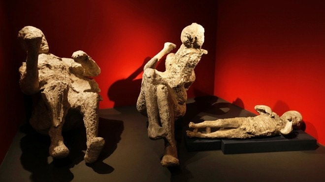 death and herculaneum A new britsh museum exhibition in london, 'life and death in pompeii and herculaneum', reveals the full human cost of the cataclysmic eruption of the volcano.