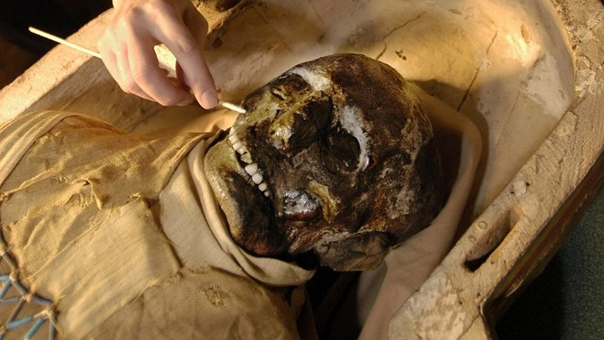 Egyptologist Mimi Leveque begins to remove salt deposits from the face of a 2,500 year-old mummy at Massachusetts General Hospital in Boston, in this Jan. 6, 2003 file photo. An expert trained in restoring ancient artifacts will remove the mummy from his coffin Friday June 7, 2013 and use cotton swabs to clear salt deposits from his face.