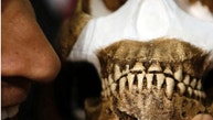 Professor Adam Habib, holds a reconstruction of Homo naledi presented during the announcement made in Magaliesburg, South Africa, Thursday, Sept. 10, 2015.  Scientists say they've discovered a new member of the human family tree, revealed by a huge trove of bones in a barely accessible, pitch-dark chamber of a cave in South Africa, showing  a surprising mix of human-like and more primitive characteristics.  (AP Photo/Themba Hadebe)