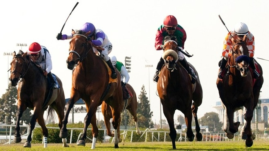 Quiet Oasis and jockey Mario Gutierrez, second from left, hold off Nereid and jockey Mike Smith, left, Antares World and jockey Kevin Krigger and Briecat and jockey Joseph Talamo, right, to win the Grade III, $100,000 Wilshire Handicap horse race, Sunday, April 29, 2012, at Betfair Hollywood Park in Inglewood Calif.
