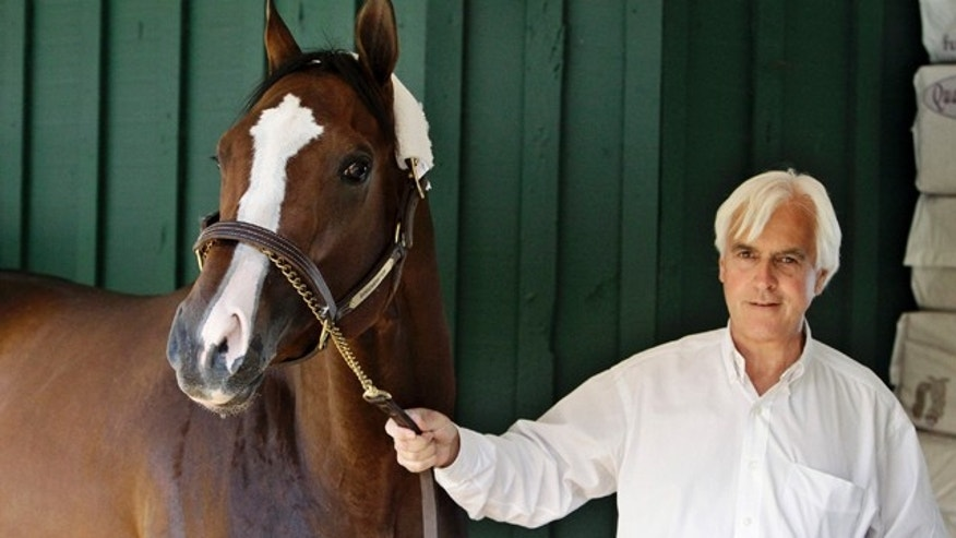 May 16, 2012: Trainer Bob Baffert leads Preakness Stakes horse race hopeful Bodemeister around the barn at at Pimlico racetrack, in Baltimore.