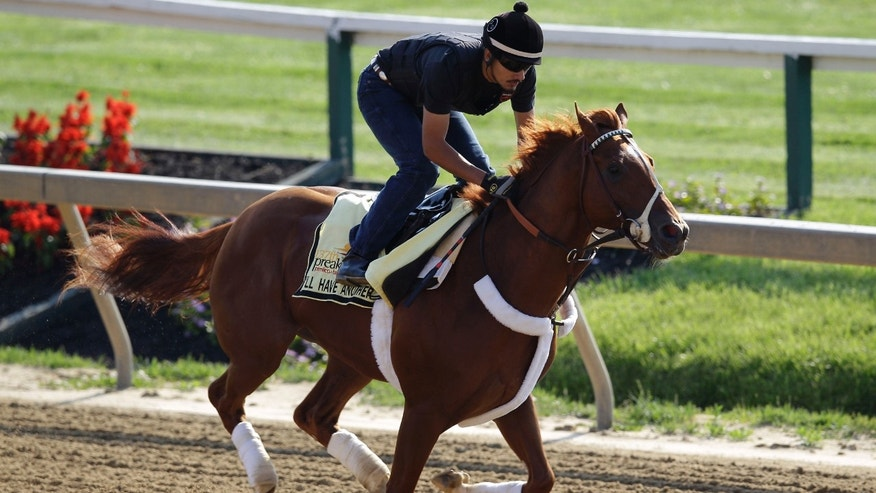Exercise rider Johnny Garcia rides Kentucky Derby winner and Preakness hopeful I'll Have Another during a morning workout at Pimlico Race Course in Baltimore, Thursday, May 17, 2012. The Preakness Stakes horse race takes place on Saturday. (AP Photo/Patrick Semansky)