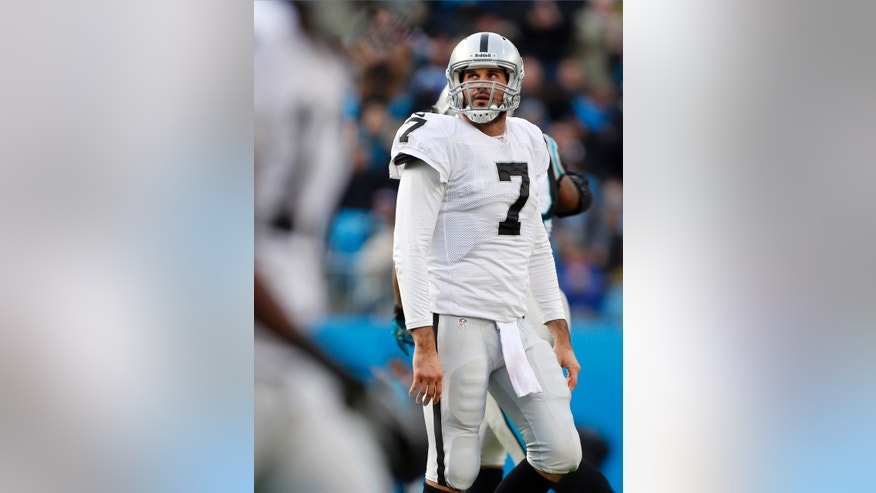 Oakland Raiders' Matt Leinart walks off the field during the second half of an NFL football game against the Carolina Panthers in Charlotte, N.C., Sunday, Dec. 23, 2012. (AP Photo/Bob Leverone)