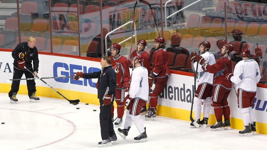 The Phoenix Coyotes participate in their first voluntary skate Sunday, Jan. 13, 2013, in Glendale, Ariz., since the NHL and the players' union agreed to a memorandum of understanding on Saturday. (AP Photo/Matt York)