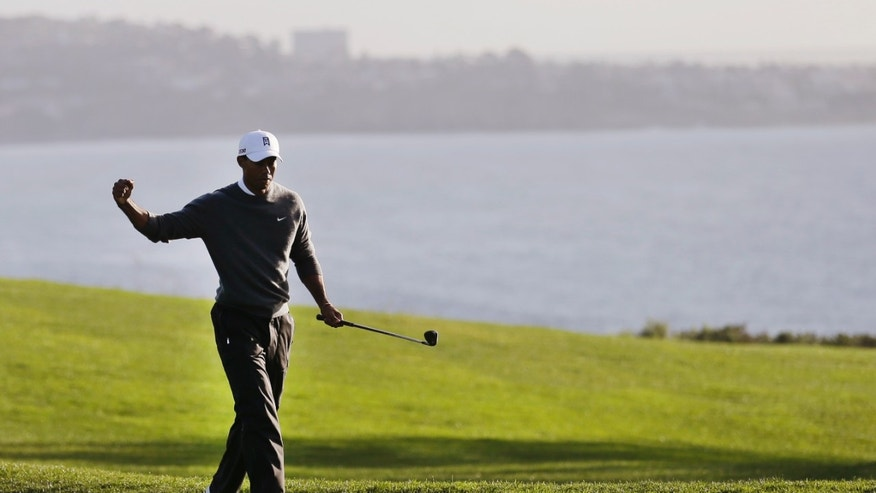 Tiger Woods reacts after chipping in from 40 feet for birdie on the fourth hole during the fourth round of the Farmers Insurance Open golf tournament at the Torrey Pines Golf Course, Sunday, Jan. 27, 2013, in San Diego. (AP Photo/Gregory Bull)