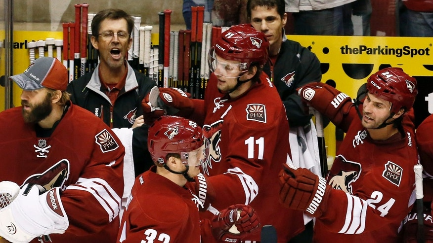 Phoenix Coyotes' Nick Johnson (32) celebrates his goal against the Dallas Stars with teammates Martin Hanzal (11), of the Czech Republic, Kyle Chipchura (24) and Jason LaBarbera, left, during the second period in an NHL hockey game Saturday, Feb. 2, 2013, in Glendale, Ariz.(AP Photo/Ross D. Franklin)