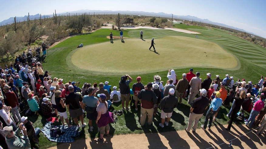 A crowd watches as Tiger Woods practices on the eighth green for the Match Play Championship golf tournament, Tuesday, Feb. 19, 2013, in Marana, Ariz. (AP Photo/Julie Jacobson)