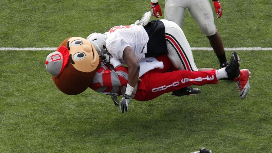 In this Saturday, April 6, 2013 photo provided by Ohio State University, Ohio State University mascot Brutus Buckeye is tackled by exuberant sophomore linebacker David Perkins during the Ohio State football team's second Student Appreciation Day in Columbus, Ohio.  On the play, Brutus was the target of a pass and Perkins said that his instincts just kicked in. The mascot was unhurt on the play.  (AP Photo/Ohio State University Department of Athletics, Will Shilling)