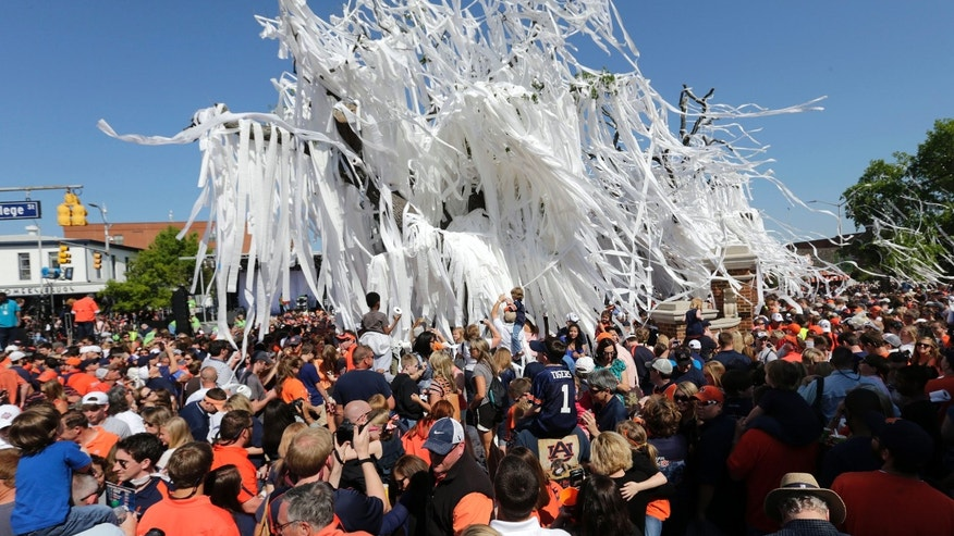 "Fans roll the poisoned oak trees at Toomer's Corner one final time following Auburn's A-Day spring NCAA college football game at Jordan-Hare Stadium in Auburn, Ala., Saturday, April 20, 2013. The tradition of ""rolling"" the trees at Toomer's Corner following a win by the football team is coming to an end. Fans rolled the trees following the spring game and officials plan to take the dying trees down Tuesday. (AP Photo/Dave Martin)"